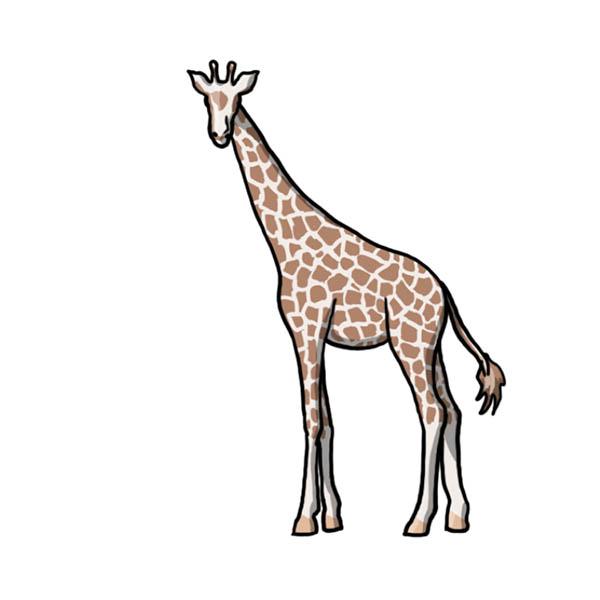 Готовый жираф