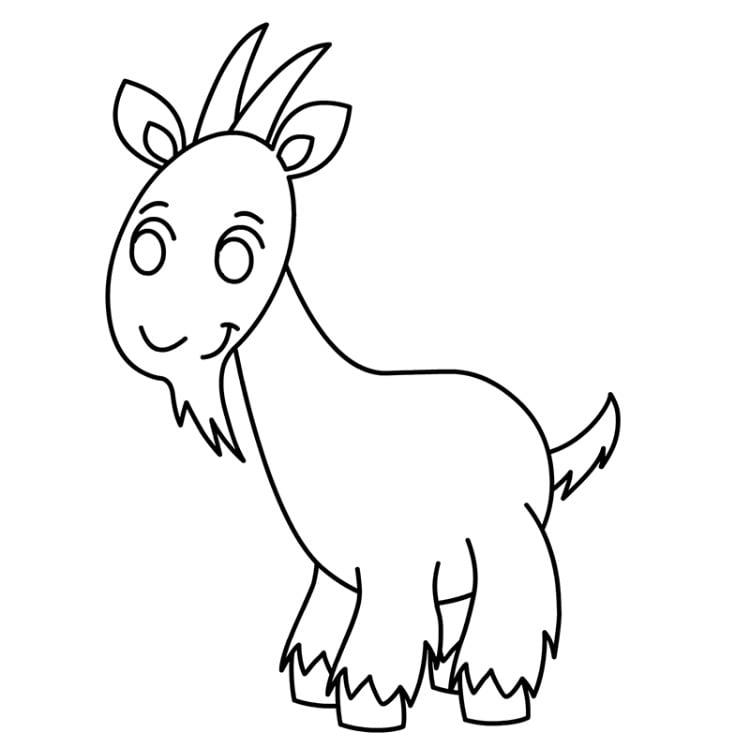 картинки как нарисовать козлика венге сочетается