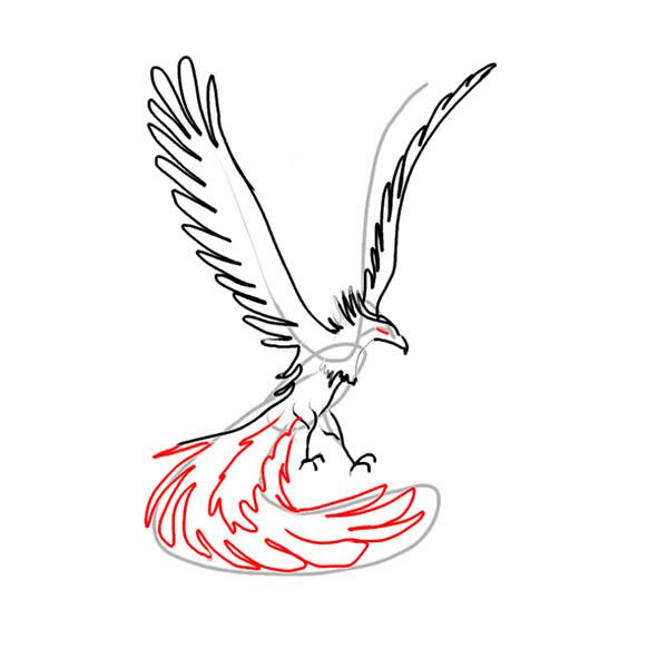 phoenix06