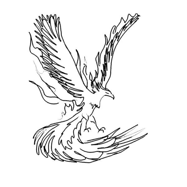 phoenix11