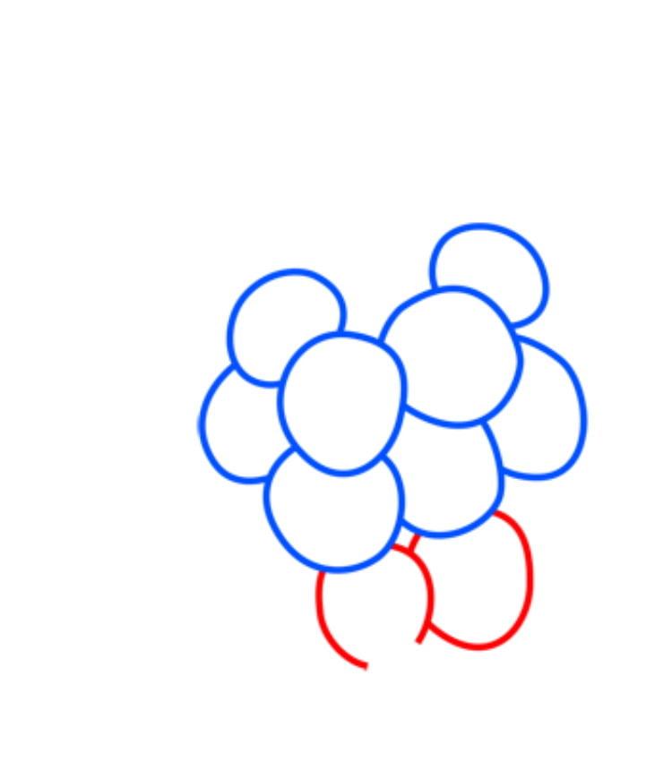 grapes04